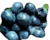 Blueberries nutritional information