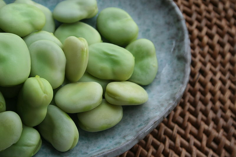 Broad Bean nutritional information
