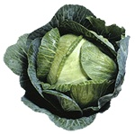 Cabbage nutritional information