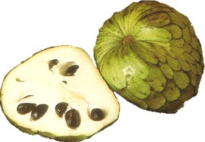 Cherimoya nutritional information