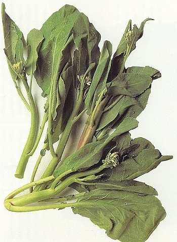 Chinese broccoli nutritional information