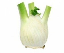Fennel nutritional information