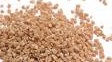 hard red wheat