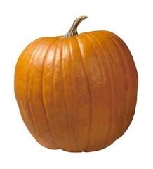 pumpkin nutritional information